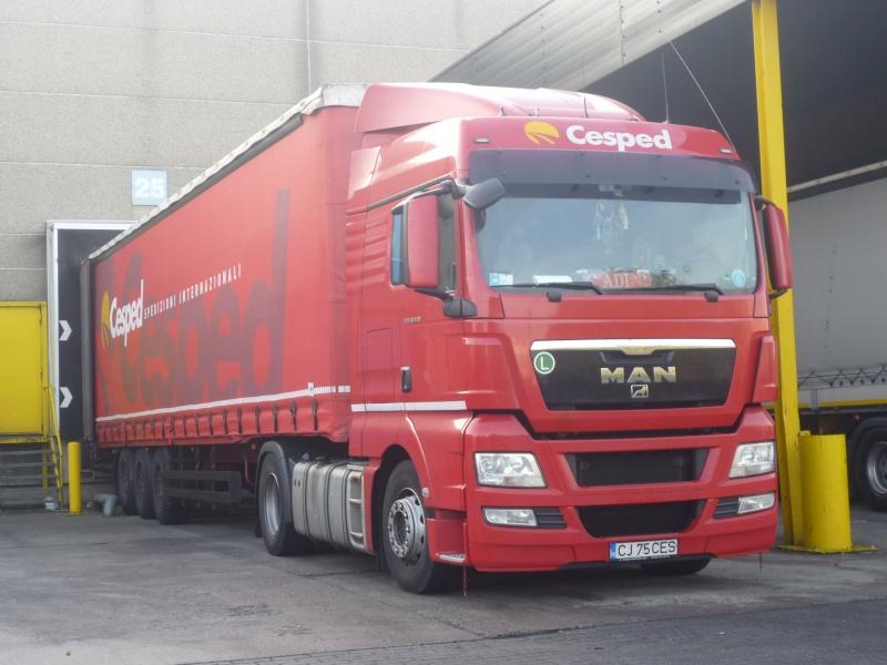 Cesped  (Lauzacco) Phot1574
