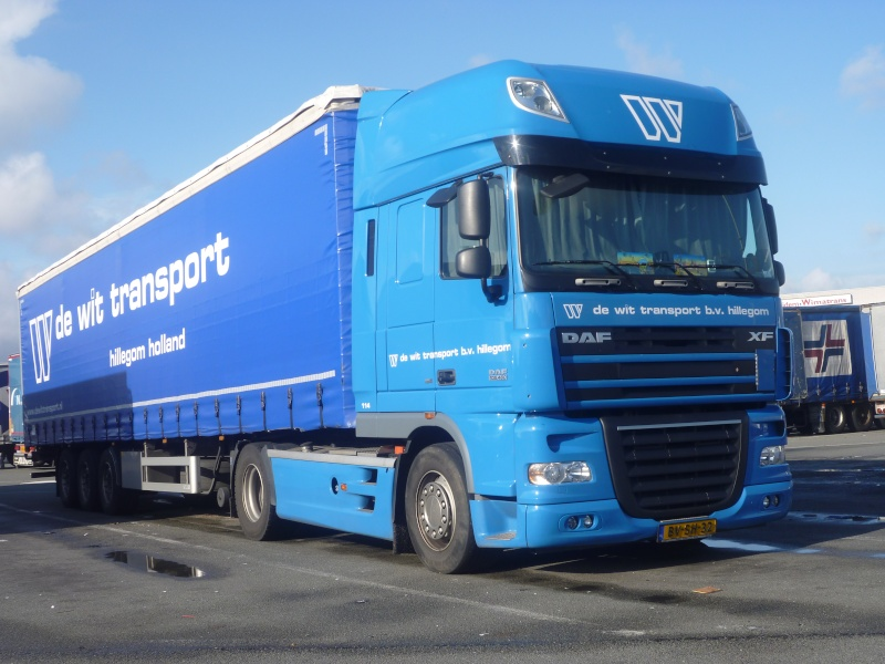 De Wit Transport (Hillegom) Photo297