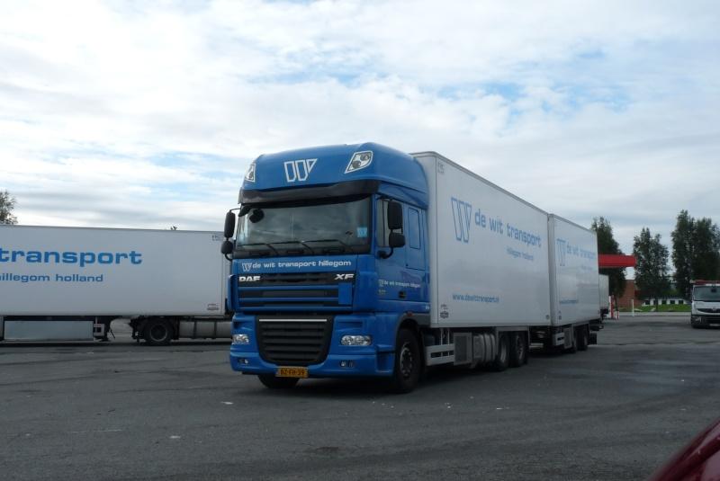 De Wit Transport (Hillegom) Photo484