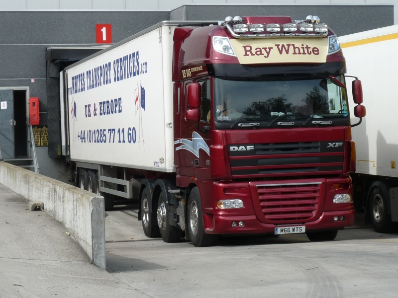 Whites Transport Services Photo581