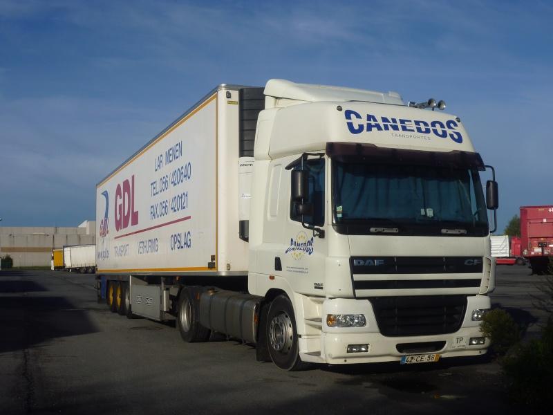 Canedos Photo752
