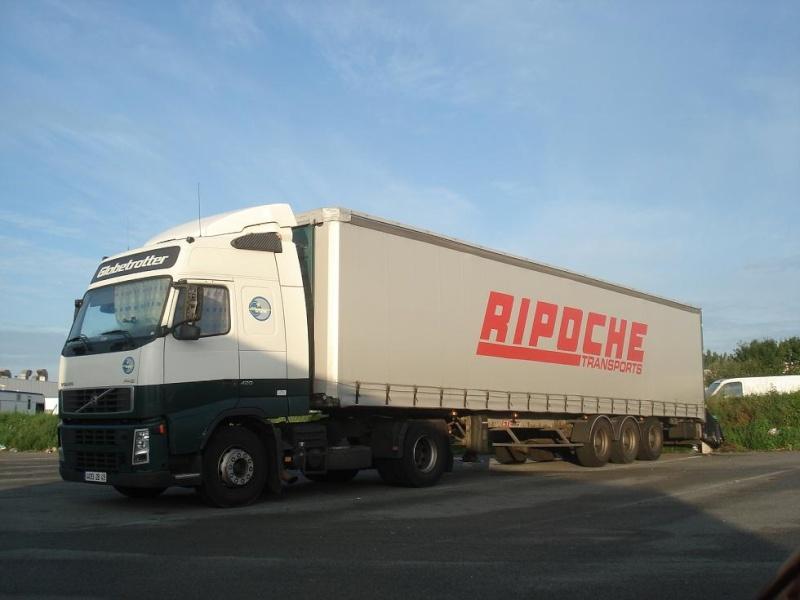 Ripoche (Beaupréau, 49) Photo910