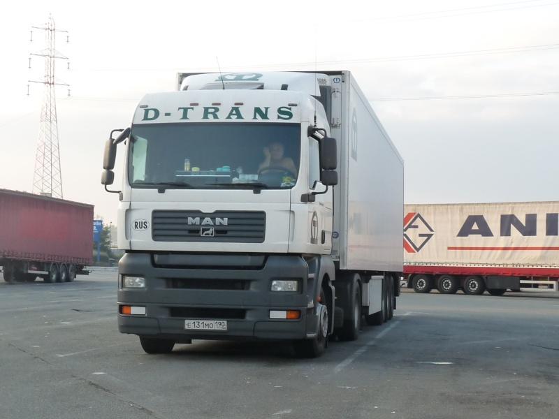D Trans  Photo949