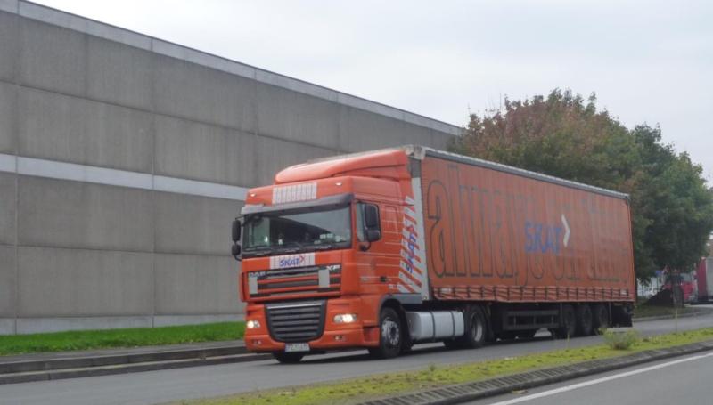 Skat Transport sp. z o.o. - Gdańsk Skat10