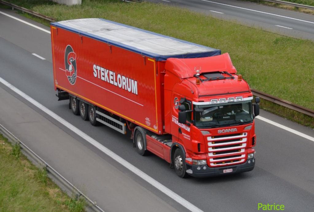 Stekelorum (Oostvleteren) Stekel10