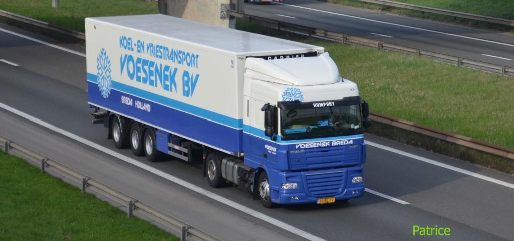 Voesenek (Breda) Vosene10