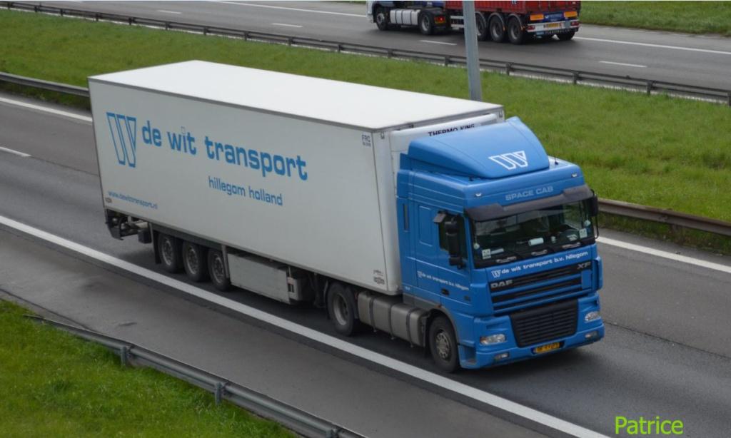 De Wit Transport (Hillegom) Wit_co10