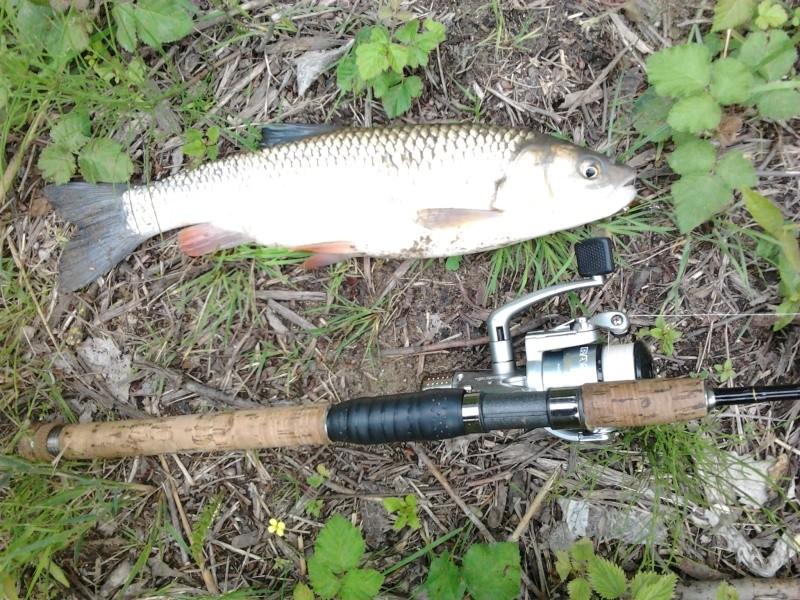 Votre pêche carna de JUIN Photo018