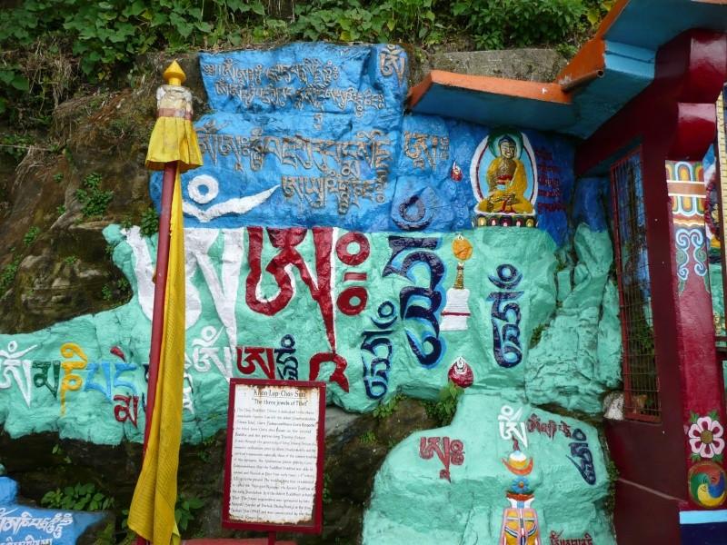 Les voeux 2012 de Mingyur Rinpoché P1000929