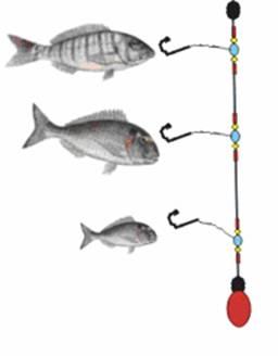 pesca desde roca Bajo_r10