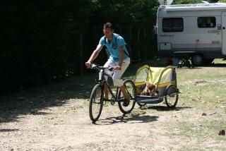 Vélo et Border Img_1410
