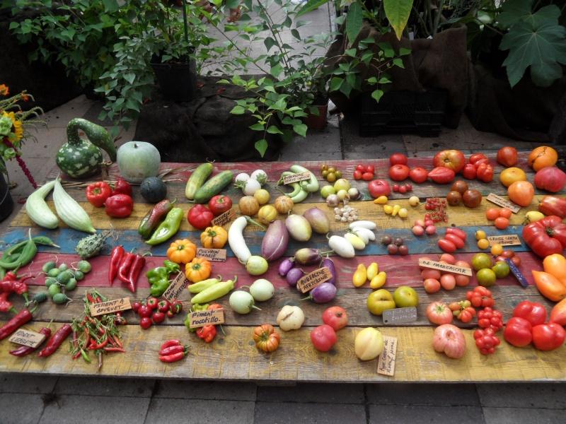 Journées des plantes au Cours Julien 00414