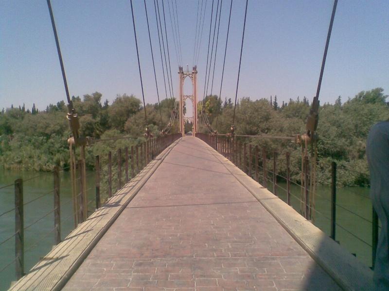 صورة من بلدي سوريا ( دير الزور ) Ouuoo010