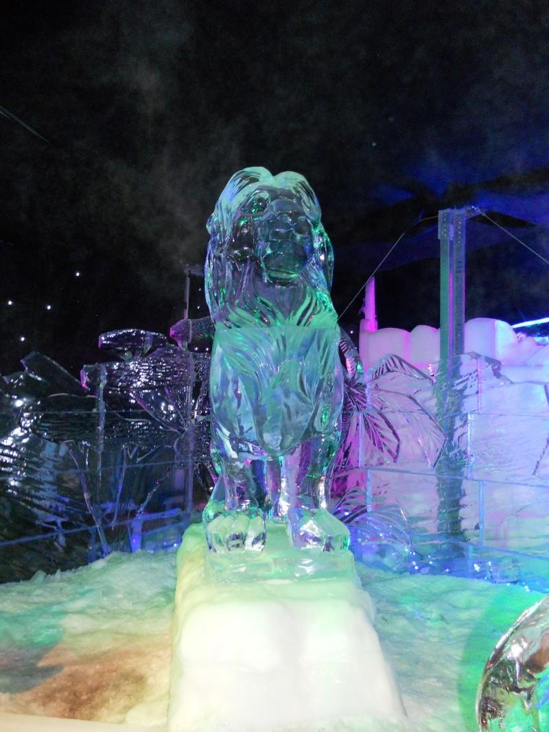 Le festival de sculptures de glaces (thème Disneyland Paris) - Page 2 Bruges31