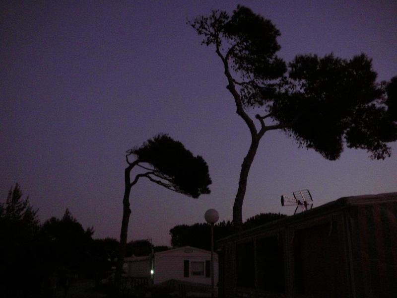 Hyères côte d'Azur sept 2011 quelques photos de vacance 30708310