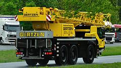Les grues de GERTZEN (Allemagne). 72787211
