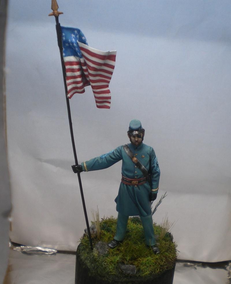 Porte drapeau de l'Union  - Page 2 Imgp2138