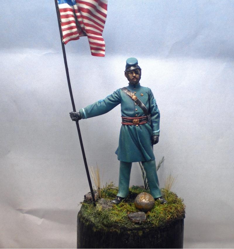 Porte drapeau de l'Union  - Page 2 Imgp2142