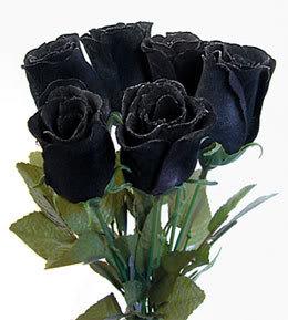 Arti warna pada Bunga Mawar. Hitam11
