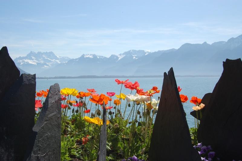balade à Montreux au bord du Léman Dsc_3313