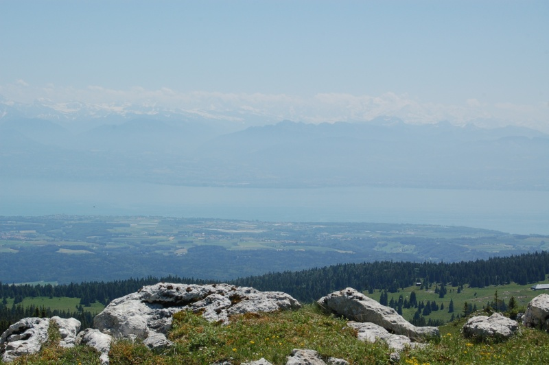 paysages vus depuis le Mont Tendre et la Dôle Dsc_3929
