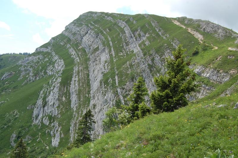 paysages vus depuis le Mont Tendre et la Dôle Dsc_4116