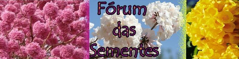 Forum da Semente
