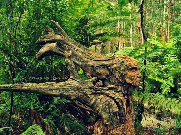 L'Art du camouflage ! 53461810