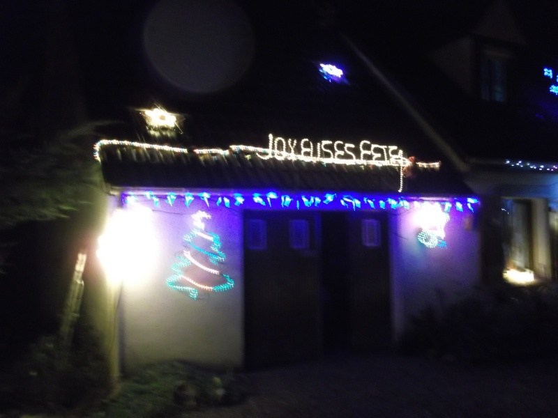 cet après midi j'ai décoré ma maison Dscf1324