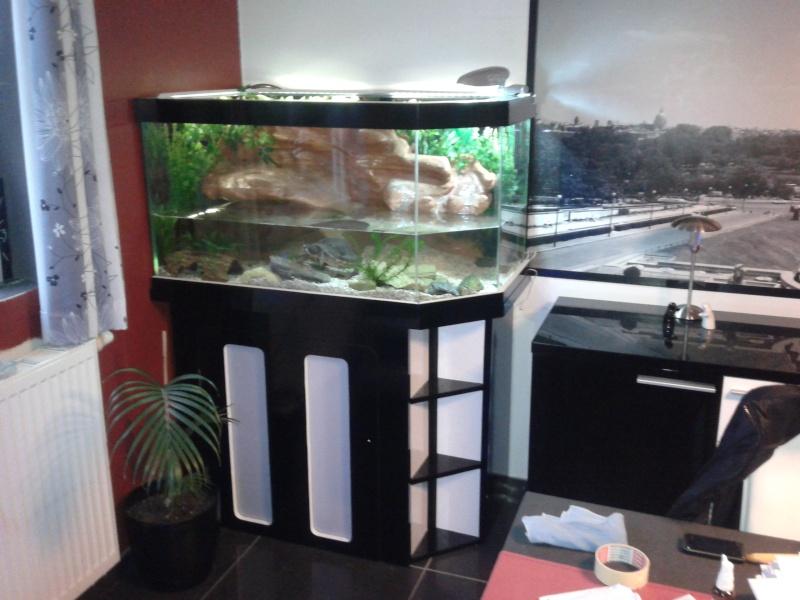 Terrarium MDF avec décor roches + 2-3 autres réalisations en cours 20120315