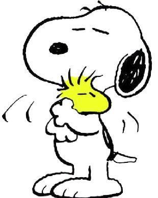 profilo swapposo di edhelerdie :) Snoopy10