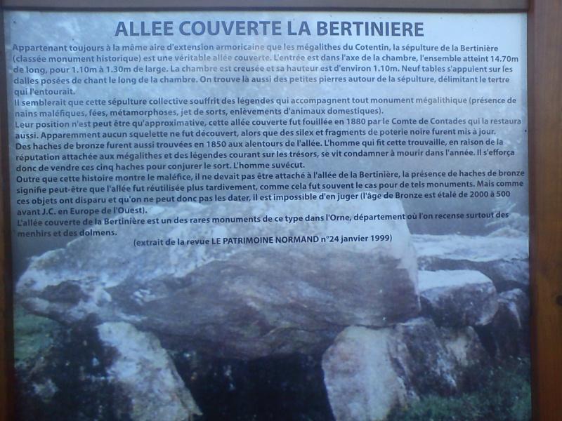Allée couverte La Bertinière (61) Dsc00110
