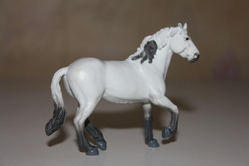 Panini horses Img_2713