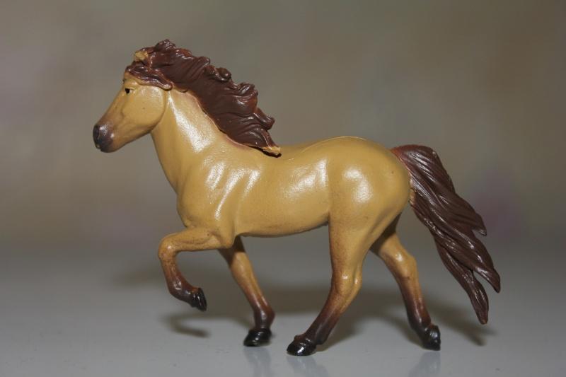 Panini horses Img_2714