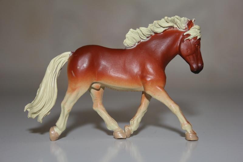 Panini horses Img_2716