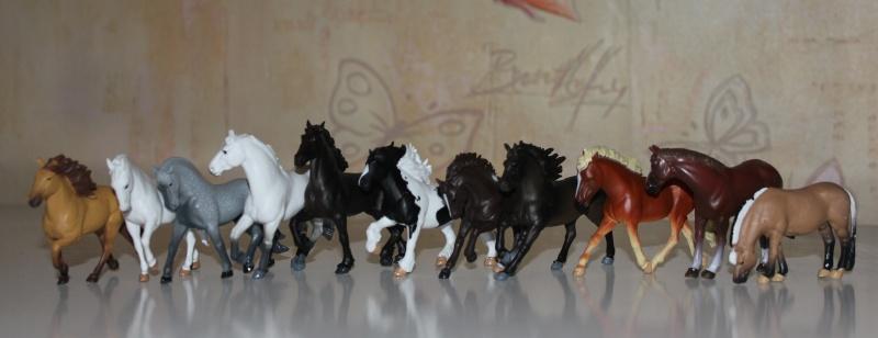 November arrivals Panini Horses Img_2722
