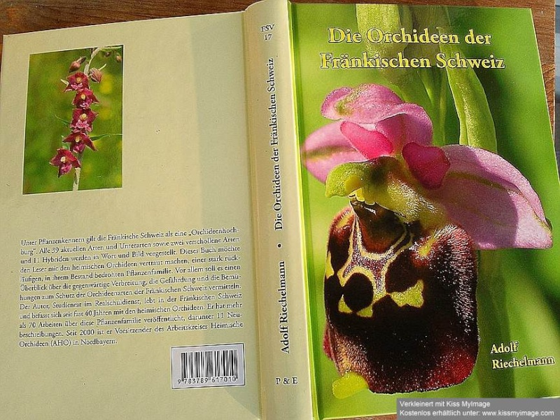 Orchideen - Seite 7 Buch10