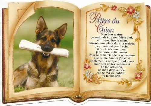 Prière du chien 33095210
