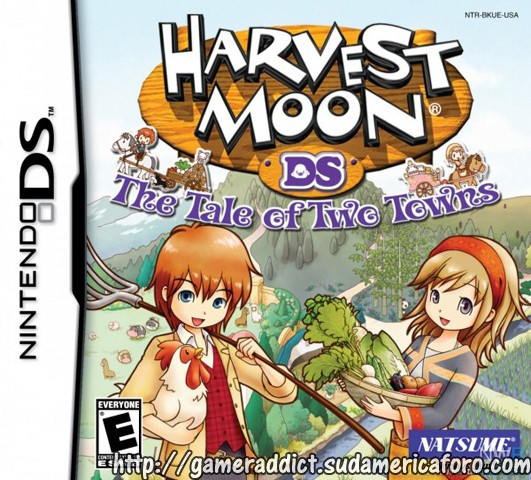 Harvest Moon DS: The Tale of Two Towns  113
