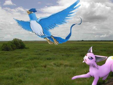 Rencontre innatendue Volar10