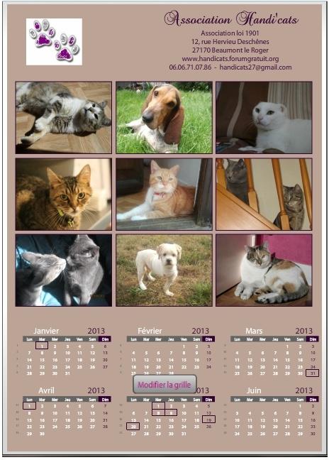 Calendriers et cartes de voeux 2013 Calend10