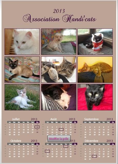 Calendriers et cartes de voeux 2013 Calend11