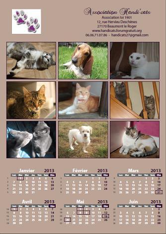 Calendriers et cartes de voeux 2013 Calend12