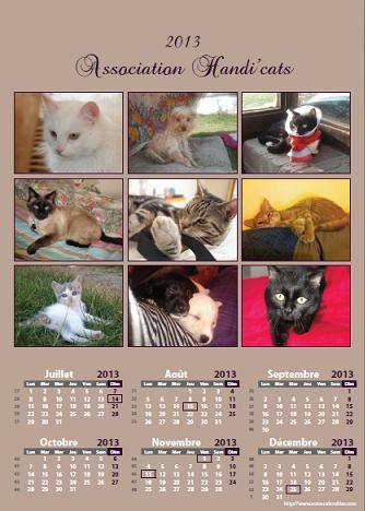 Calendriers et cartes de voeux 2013 Calend13