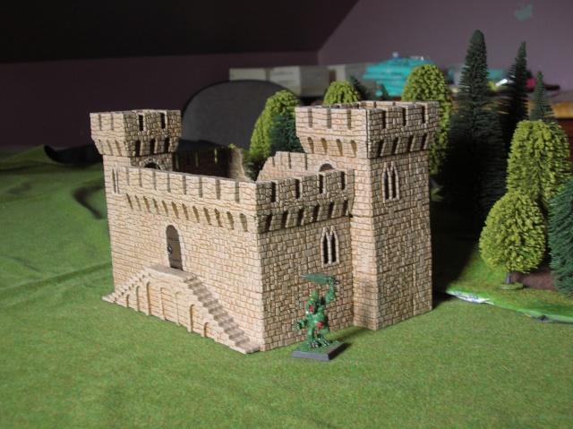 castlecraft from russia Dscn5511