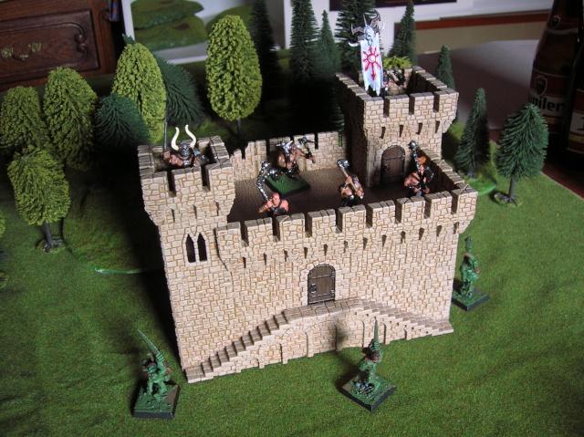 castlecraft from russia Dscn5512