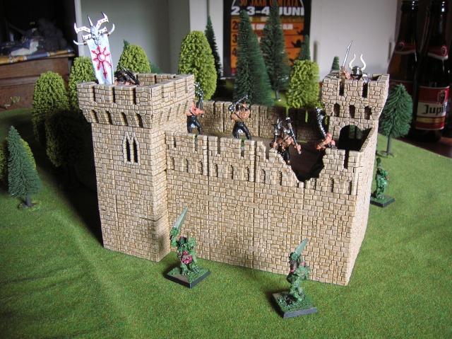 castlecraft from russia Dscn5513