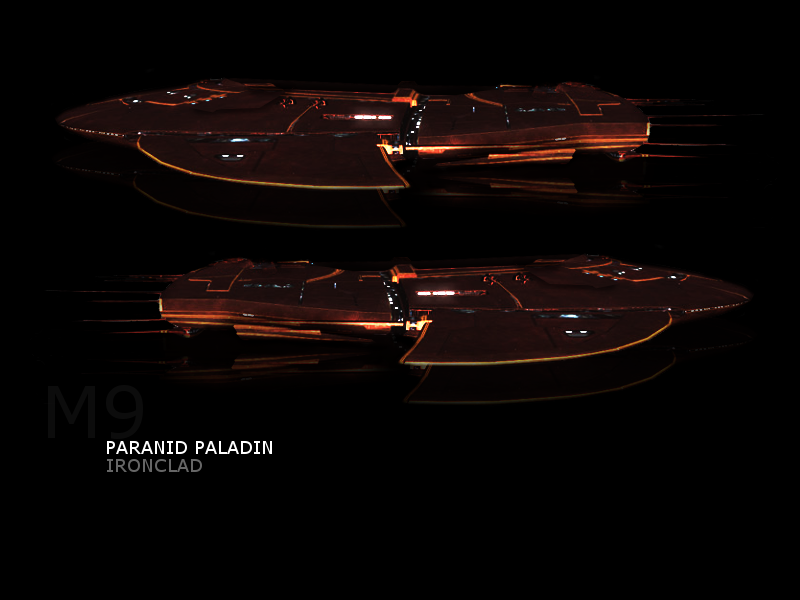 Ship Concepts Paladi10