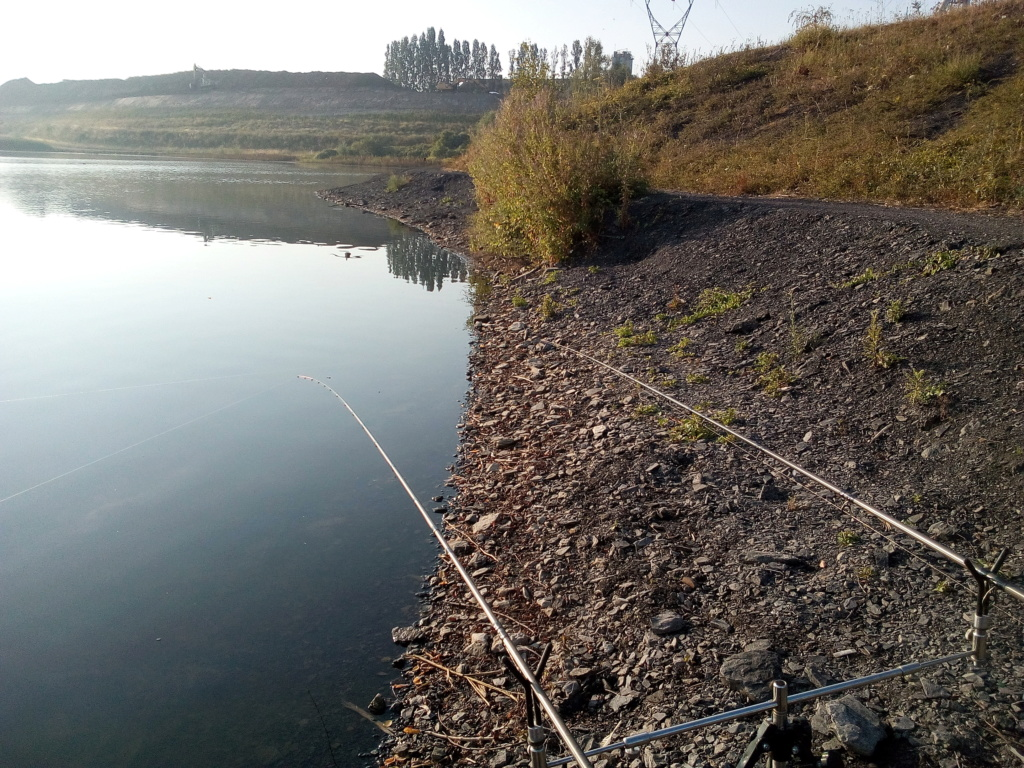 Fond d'étang en schistes Img_2019