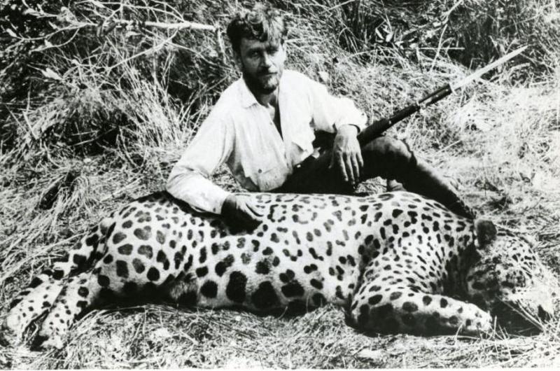 Jaguar monstro VS Tigre de Sumatra Imagem16